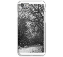Montana Winter Snow Storm iPhone Case/Skin