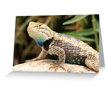 Reptile Beauty Greeting Card