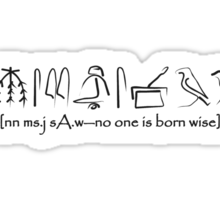 No One Is Born Wise Sticker