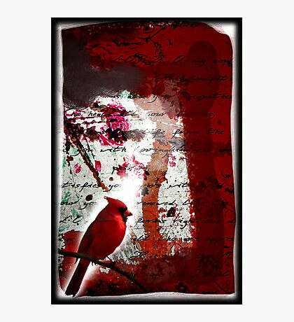 Red Redemption Photographic Print