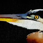 Heron Portrait by Darlene Lankford Honeycutt