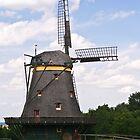 Windmill by yoshke