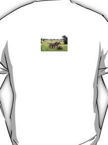 GREVY ZEBRA TSAVA NATIONAL PARK KENYA T-Shirt