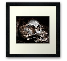 Biologic Framed Print