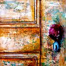 Door#7..The Red Door Knob by © Janis Zroback