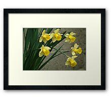 Shouting spring Framed Print