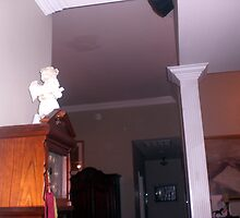 Number  3  in 3 pictures with orbs moving in the living room by kimbeaux1969
