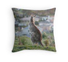 Urban Kangaroo Throw Pillow