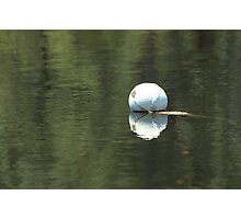 Double Float Photographic Print
