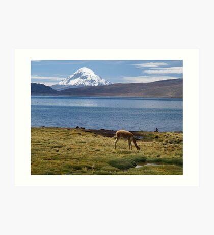 Volcán Pomerape - Chile Art Print