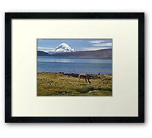Volcán Pomerape - Chile Framed Print