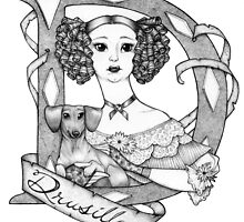D is for Drusilla by Maryanneleslie