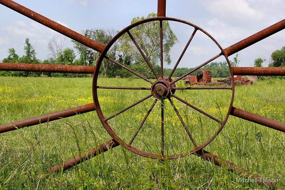 Wheel Alignment by Mitchell Tillison