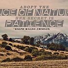 Adopt The Pace of Nature by ea-photos