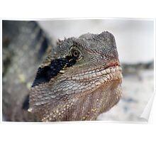 Dragon.. Poster