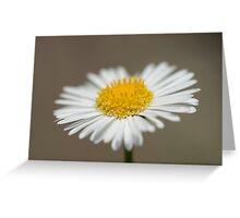 Flower Hedge Greeting Card