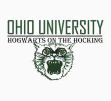 Ohio University, Hogwarts on the Hocking by poopsiebear
