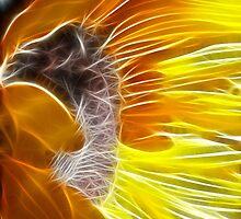 flaming sunflower by SarahTrangmar