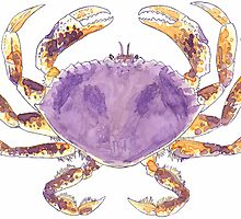 Dungeness Crab by Jessuh