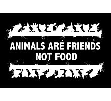 Animals Are Friends Photographic Print