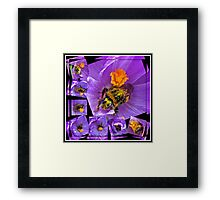 The Messiest Bee You Ever Did See! Framed Print