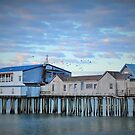 50 Shades Pier by Poete100