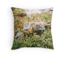 Iguana - Galapagos Islands Throw Pillow