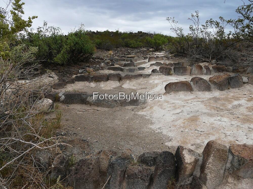 3 Rivers Petroglyphs  by FotosByMelissa
