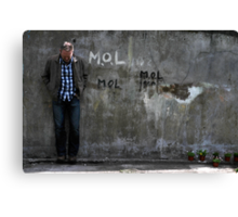 Dom and The Flower Pots Canvas Print