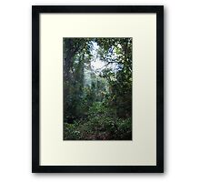 Harrington Rainforest Framed Print