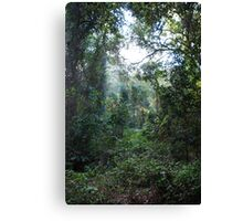 Harrington Rainforest Canvas Print