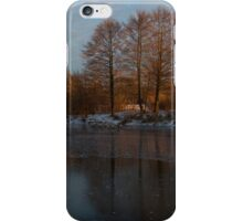 Gray and Amber - an Early Winter Morning on the Lake Shore iPhone Case/Skin