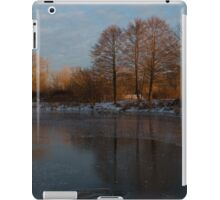 Gray and Amber - an Early Winter Morning on the Lake Shore iPad Case/Skin