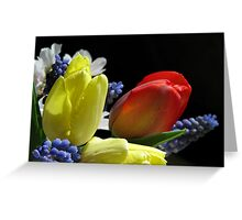 The Vibrance Of Spring Greeting Card