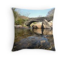 Born from water and stone Throw Pillow