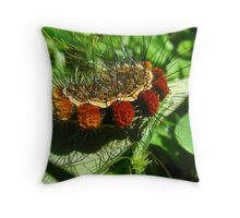 Fantastic Caterpillar Curled Up Throw Pillow