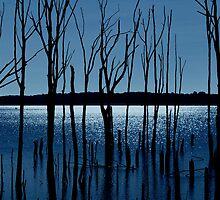 Blue Reservoir by AngieM