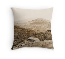 Images of a Victorian traveller #2 Throw Pillow