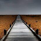 Bridge to nowhere by Jonathon Speed