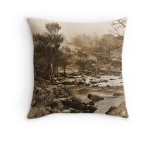 Images of a Victorian traveller #4 Throw Pillow