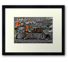 Nasturtiums In The Breeze - Selective Color Framed Print