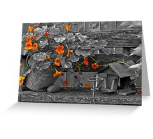 Nasturtiums In The Breeze - Selective Color Greeting Card