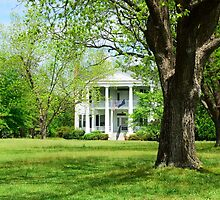 Southern Plantation by AlixCollins