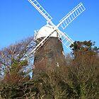 Windmills by Tony Kemp
