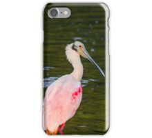 Beautiful and Bizarre Roseate Spoonbill iPhone Case/Skin