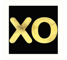 Golden Letter series x & o (hugs and kisses)  Art Print