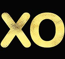 Golden Letter series x & o (hugs and kisses)  by jacqs