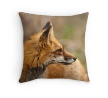 It's Time We Stop, Hey What's That Sound . . . Throw Pillow