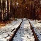 Forsaken old railway track by renifer