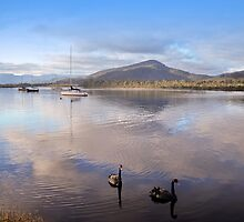 Quiet on the Huon by Karine Radcliffe